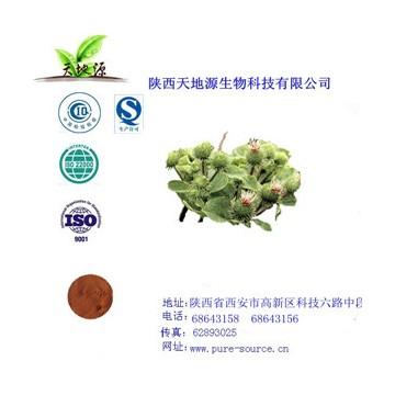 牛蒡子提取物牛蒡甙20%HPLC vc银翘片原料