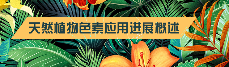 天然植物色素应用进展概述