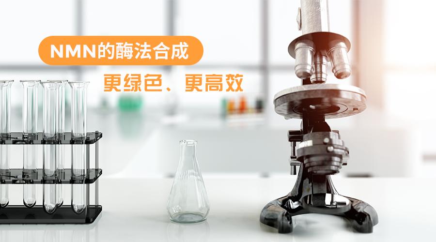 NMN的酶法合成:更綠色、更高效