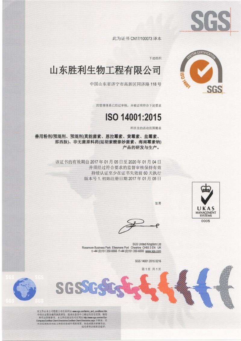 ISO14001 中文版