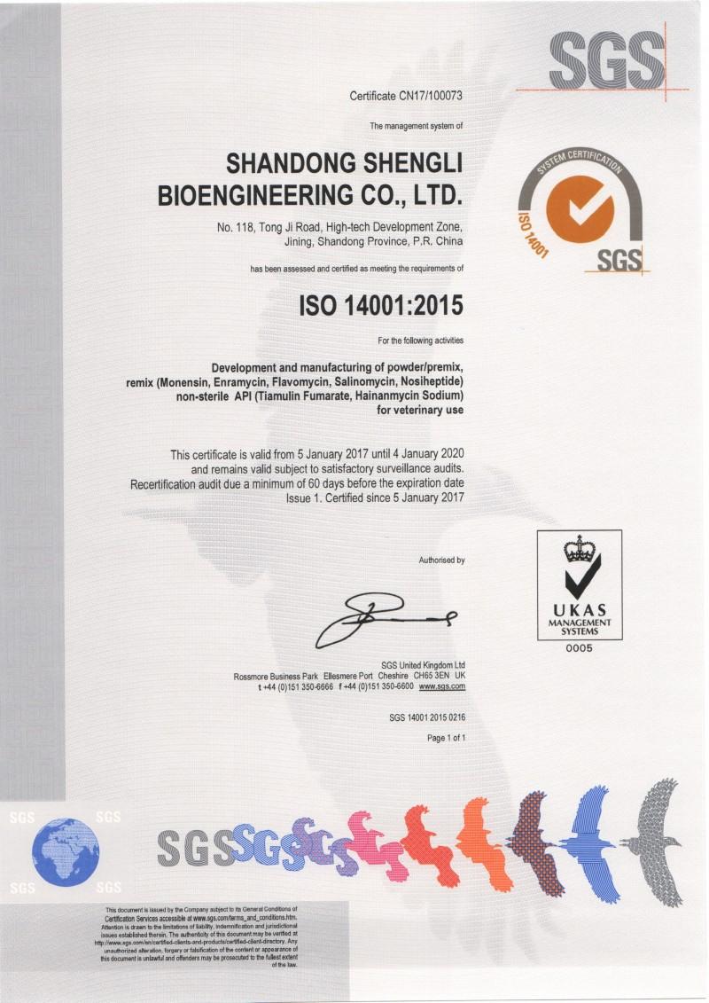ISO14001 英文版