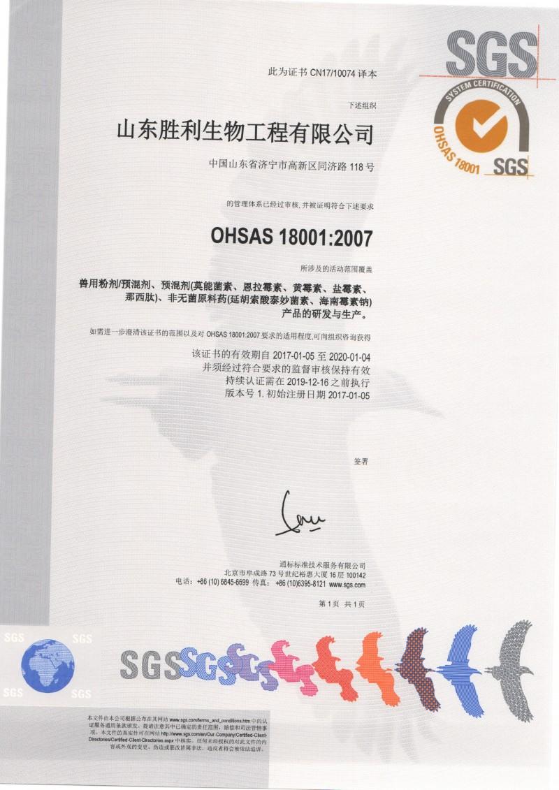 OHSAS18001 中文版