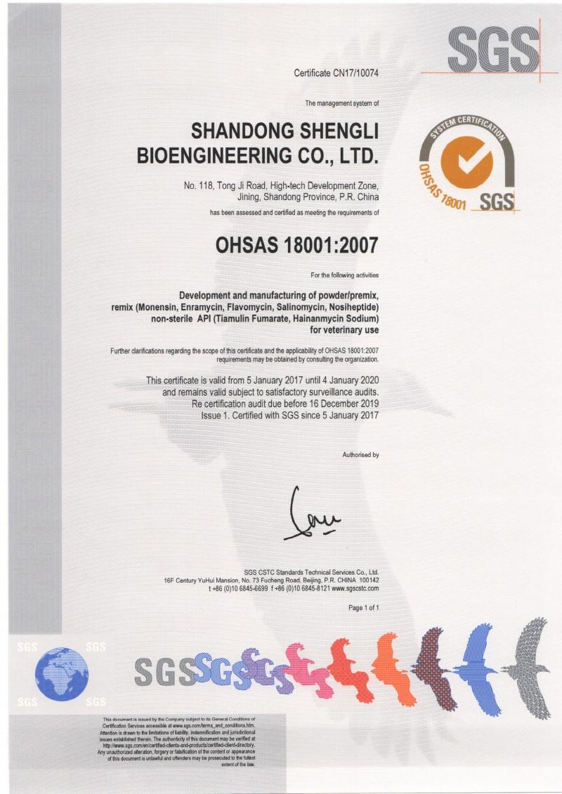 OHSAS18001 英文版
