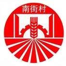漯河南街村药业集团制药有限企业