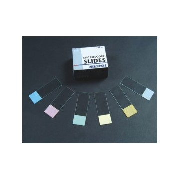 Microscope Slides 5