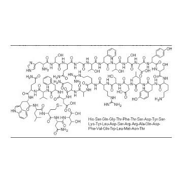 Glucagon(胰高血糖素)