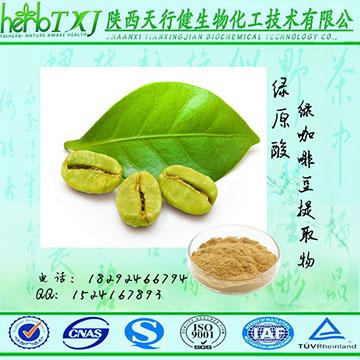 綠咖啡豆提取物 總綠原酸50