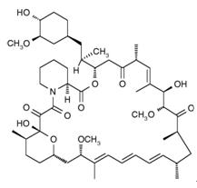 Rapamycin(Sirolimus) 雷帕霉素/西罗莫司