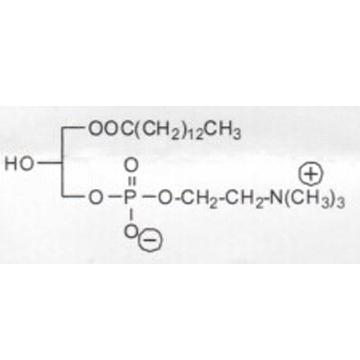 肉豆蔻酰溶血卵磷脂 M-LysoPC