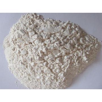 碱性木聚糖酶