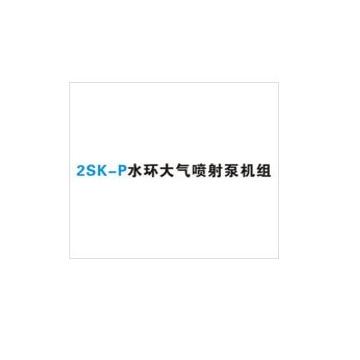 水环大气喷射机组2SK-P