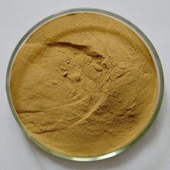 百合提取物 8:1 Lily Bulb Etract Powder