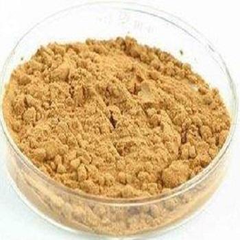 南瓜子提取物 30:1 Pumpkin Seed Extract Powder