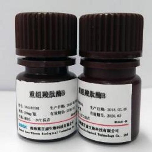 重组羧肽酶 B