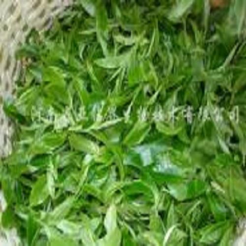 茶叶降农残工程