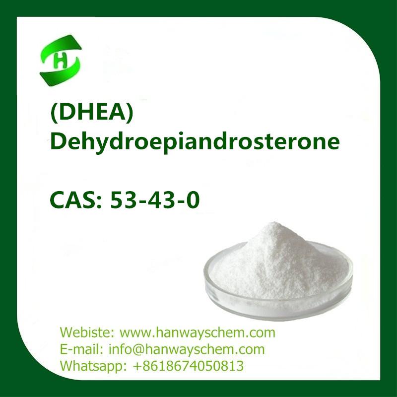 DHEA hormones 7-keto Dehydroepiandrosterone CAS: 53-43-0 in stock