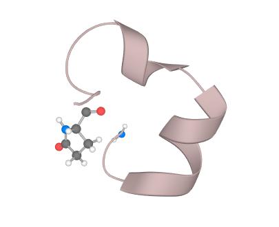 mu-Conotoxin / u-芋螺毒素