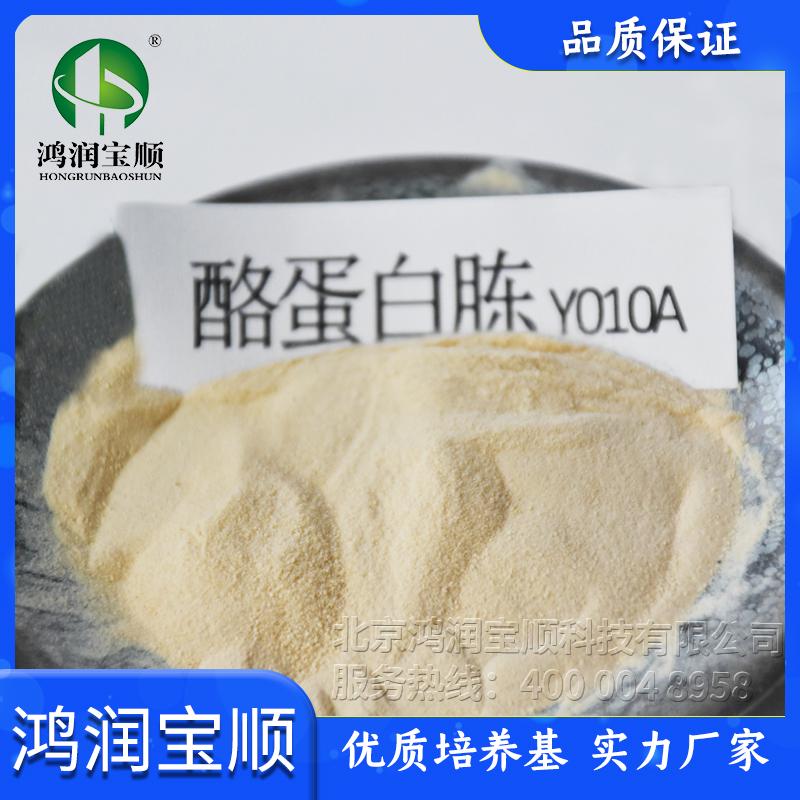 酪蛋白胨Y010A