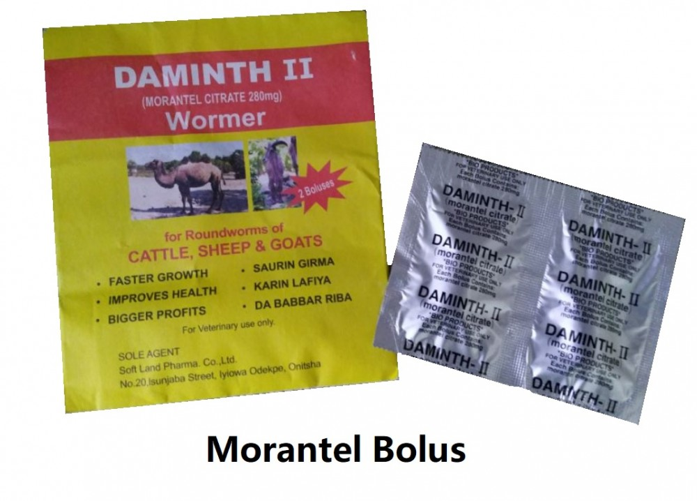 morantel citrate bolus