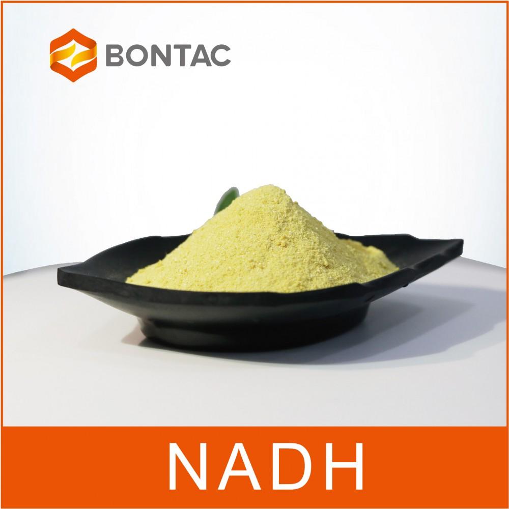 NADH-还原型辅酶Ⅰ