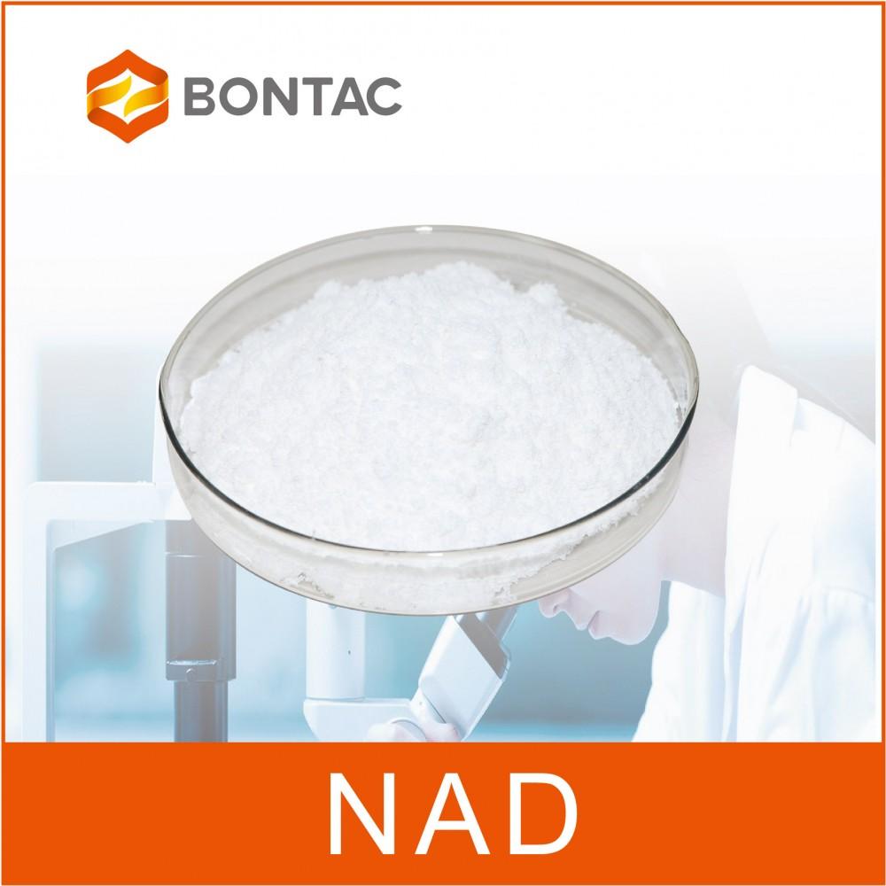 NAD-烟酰胺腺嘌呤二核苷酸