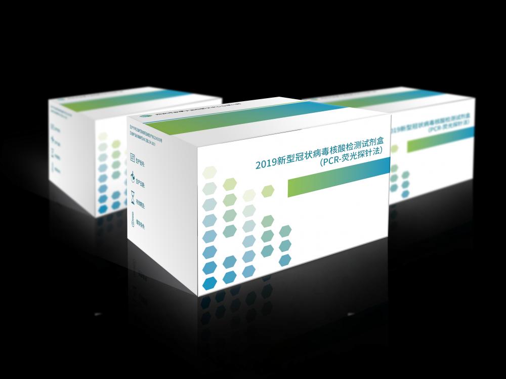 2019新型冠状病毒核酸检测试剂盒(PCR-荧光探针法)