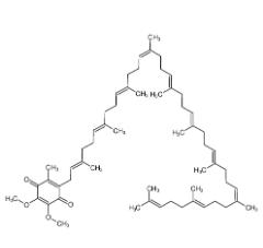 輔酶 Q10 303-98-0