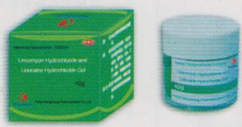 林可霉素利多卡因凝胶Lincomycin Hydrochloride and Lidocaine Hydrochloride Gel