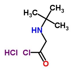 N-叔丁基甘氨酰氯鹽酸鹽