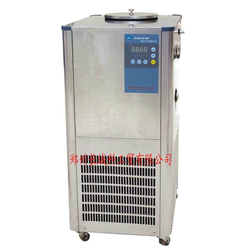 DLSB-5L/40℃(不銹鋼)低溫冷卻液循環泵
