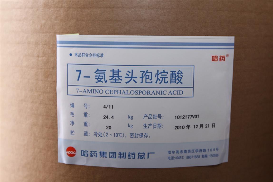 7-氨基頭孢烷酸