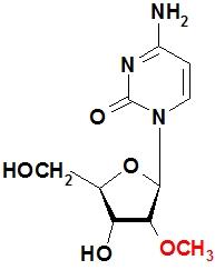 2´-甲氧基胞苷 2´-OMe-C