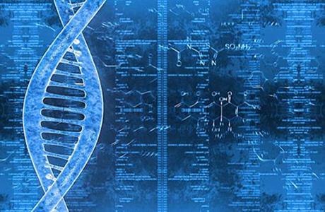 苏州瑞安生物科技有限企业