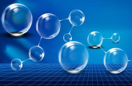 武汉维斯尔曼生物工程有限企业是做什么的