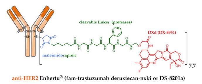 fam-trastuzumab-deruxtecan nxki
