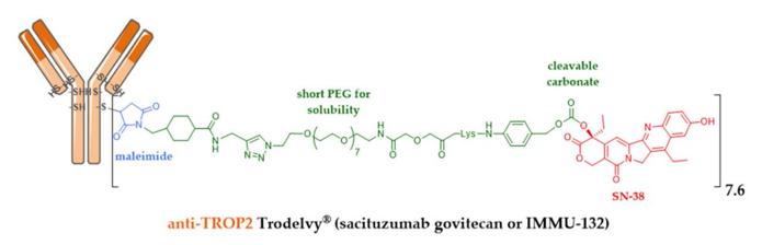 Sacituzumab-govitecan